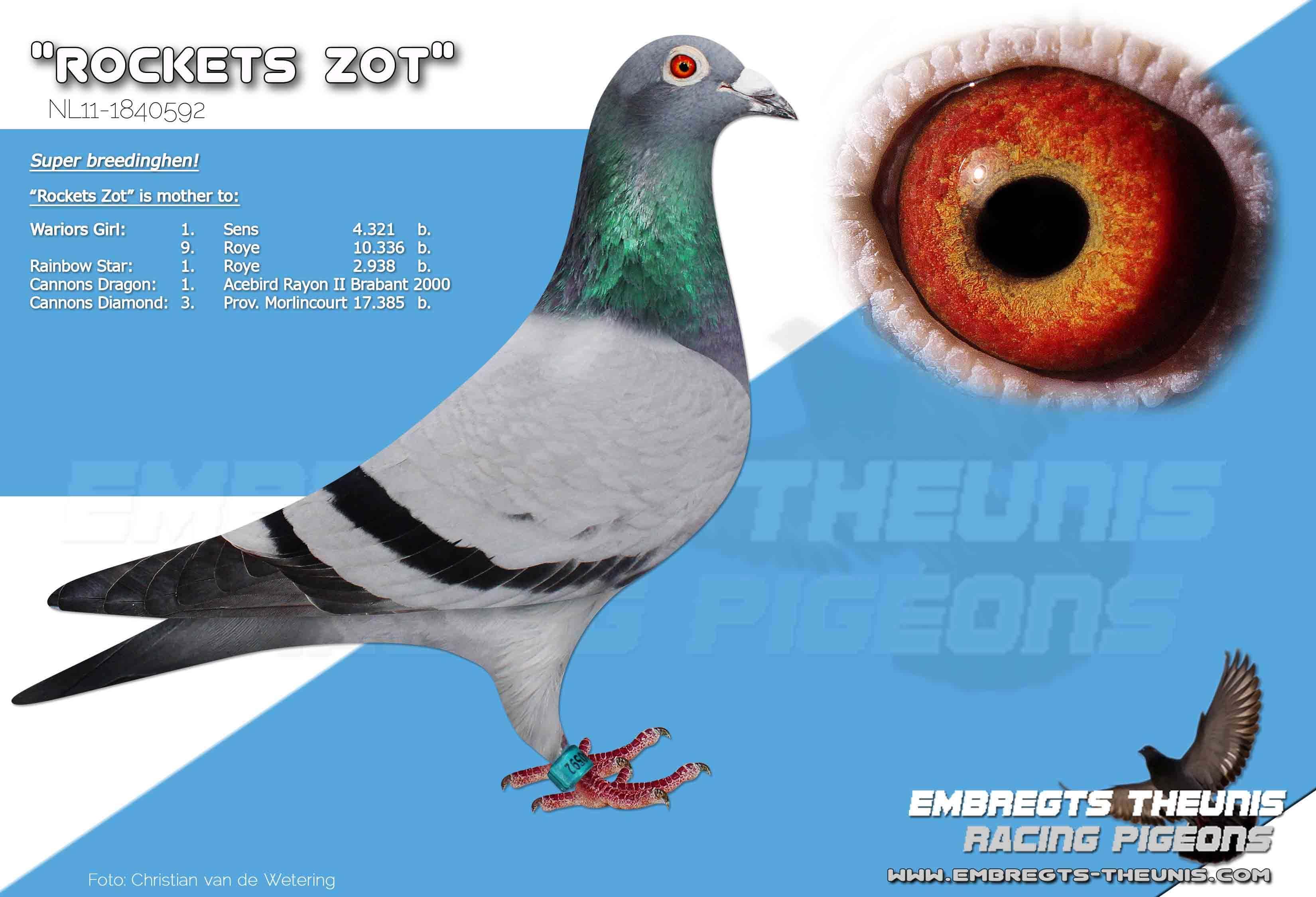 Rockets-Zot-NL11-1840592