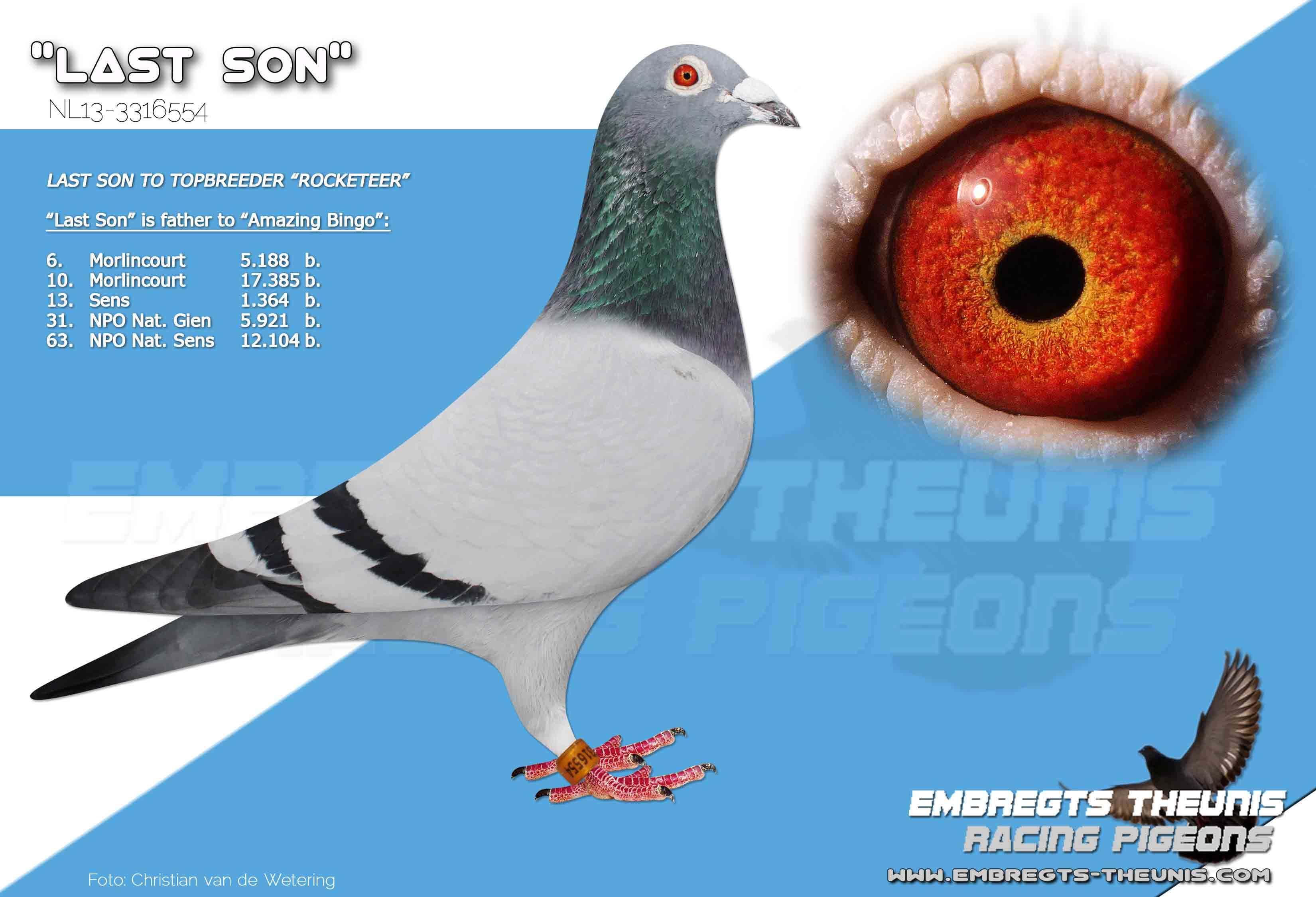 Last-Son-NL13-3316554
