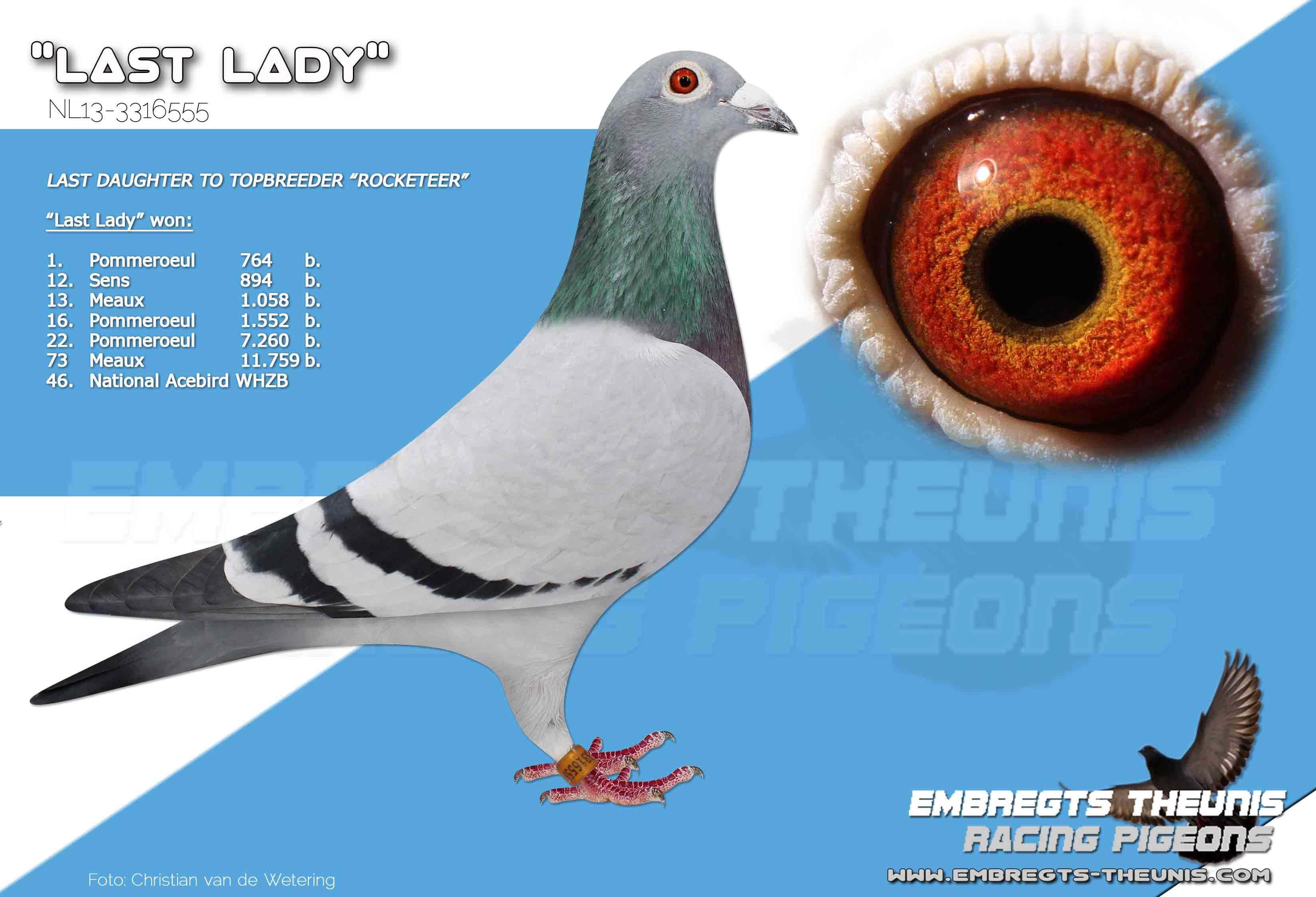 Last-Lady-NL13-3316555