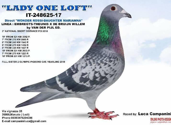 lady-one-loft