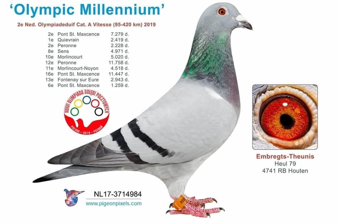 olympic-millennium