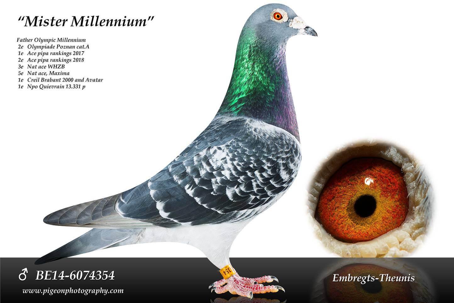 Mister-Millennium-BE14-6074354