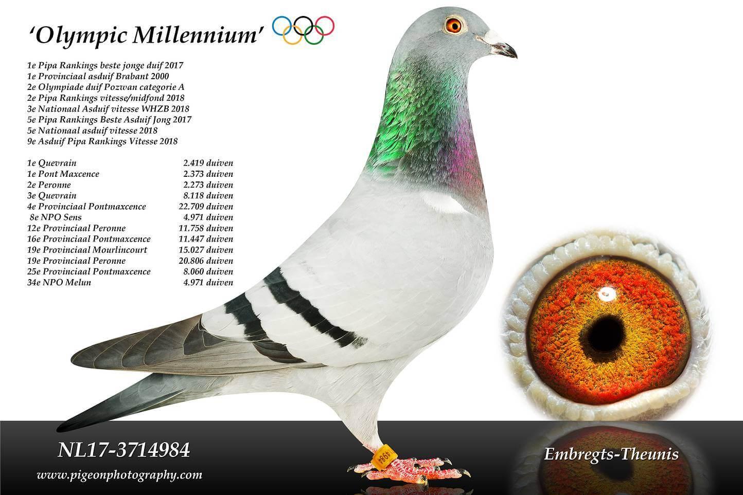 Olympic-Millennium-NL17-3714984